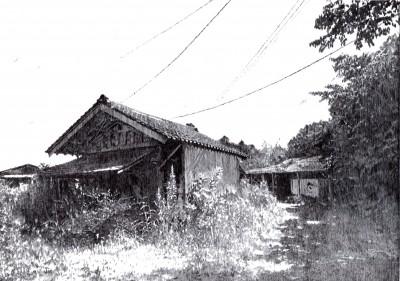 Wild House