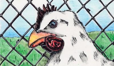 Serious Chicken