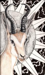 Etherial Antelope