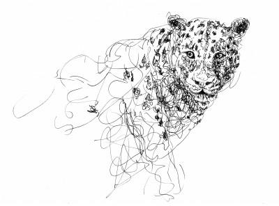 Jaguar Doodle