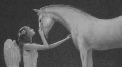 The Angel's Horse
