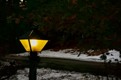 Light on a Snowy Day