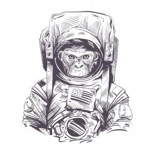 Astronaut Ape