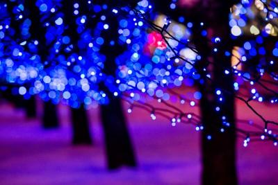 Electric Winter