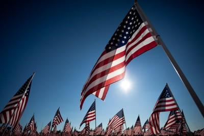 Sunlit Flags