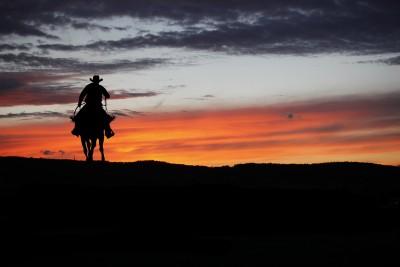 Sunset Cowboy