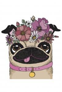 Flowery Pug