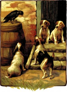 Bird and Pups