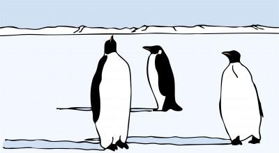 Chillin' Penguins