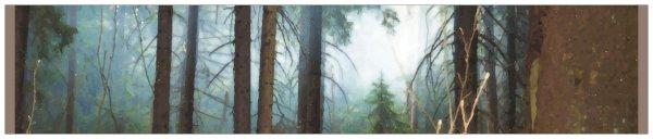 """3"""" x 15"""" Panoramic Photo Sticker"""